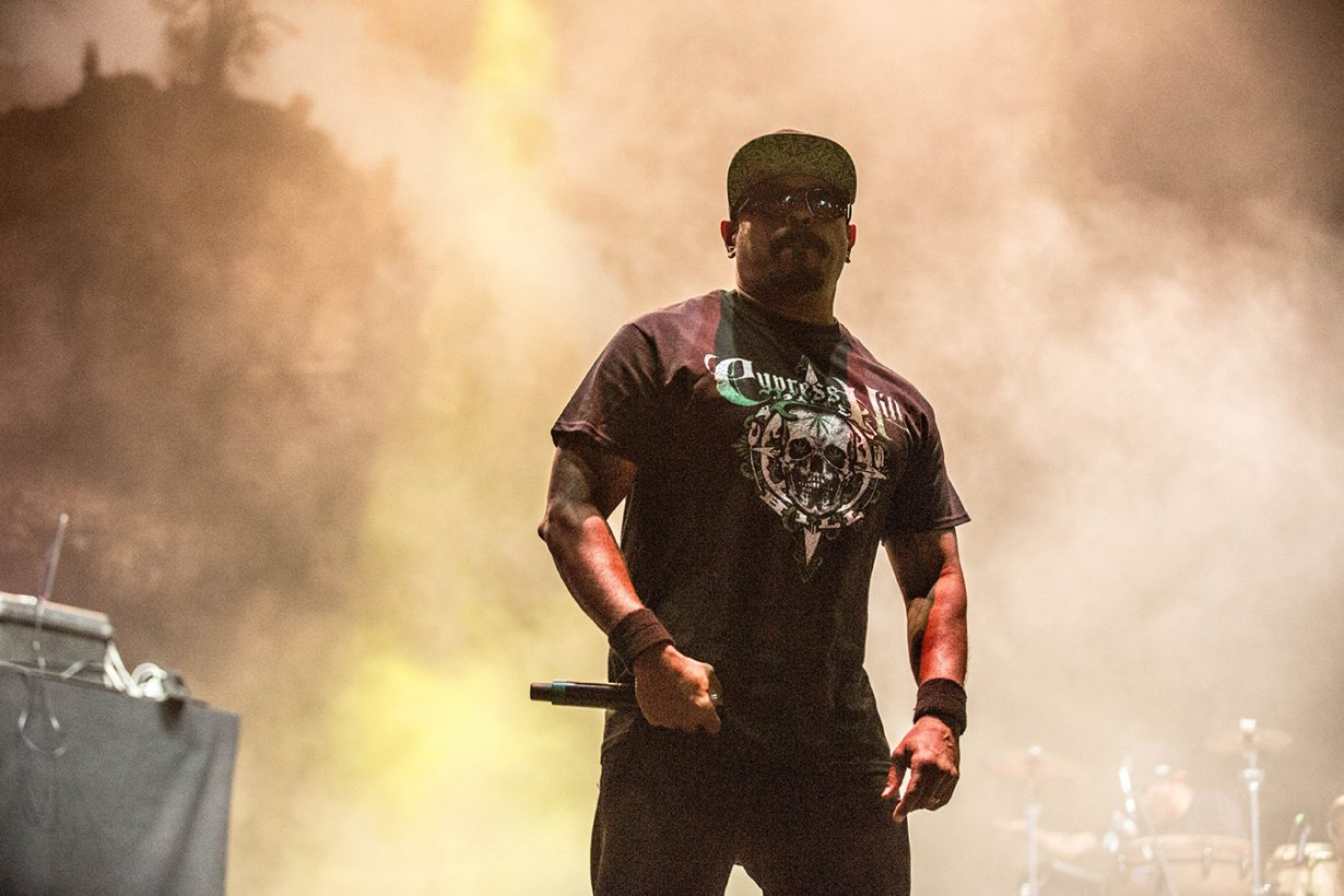 4I0A1426 1230x820 Riot Fest 2018. The Wildest and Hardest Festival in Chicago